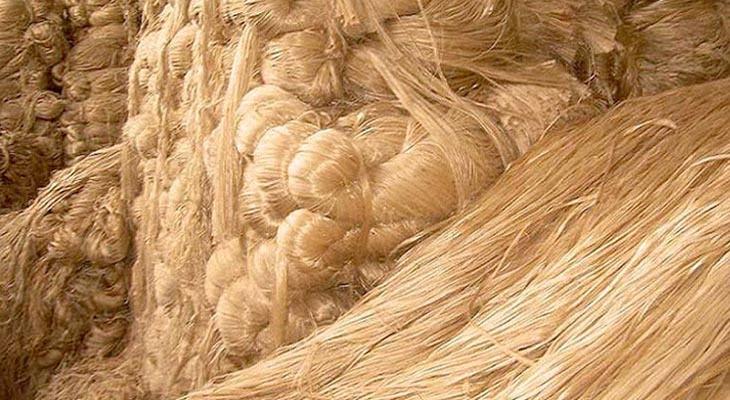 মংলা বন্দর দিয়ে কাঁচাপাট রপ্তানি অর্ধেকে নেমেছে